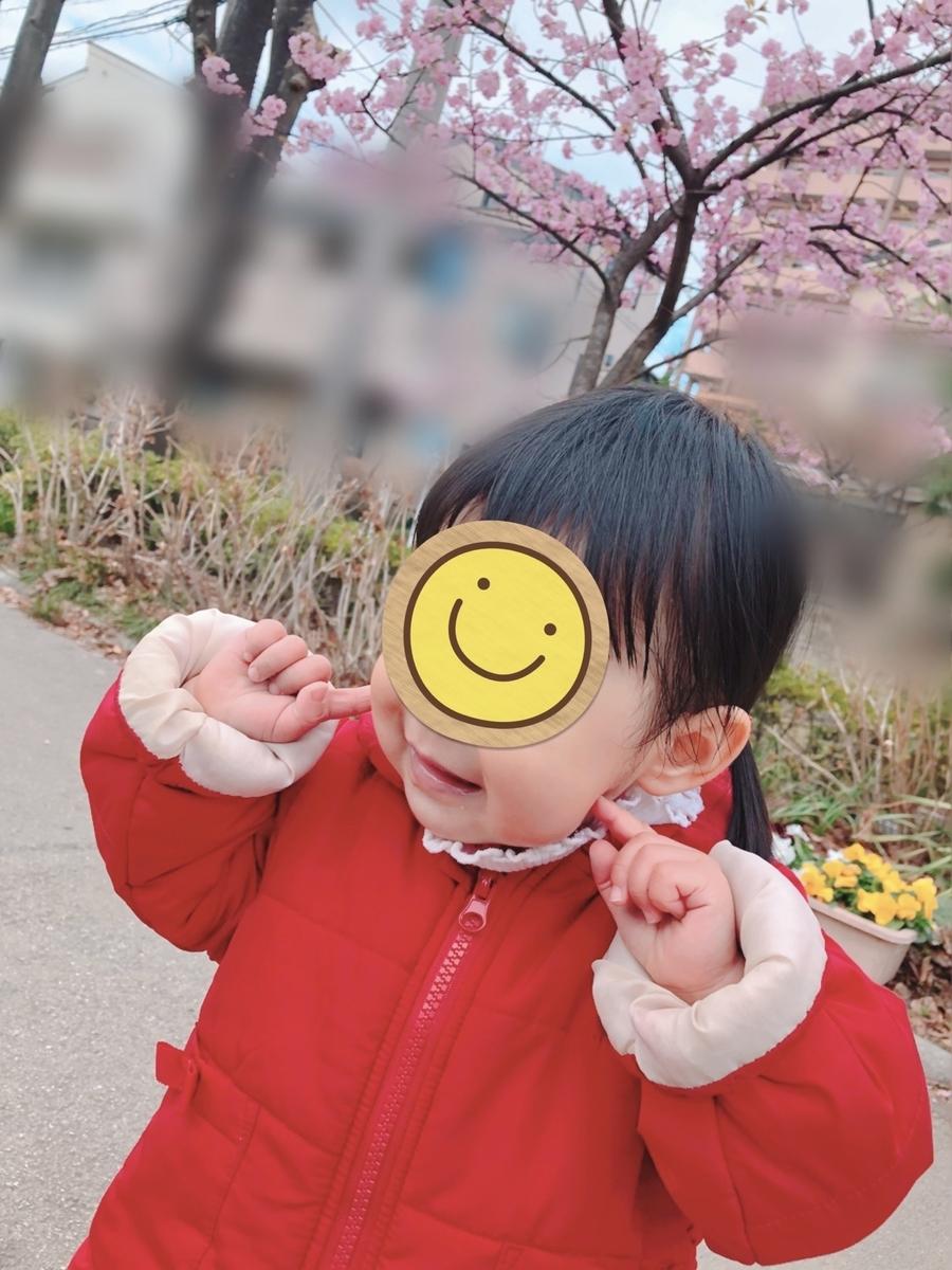 f:id:yuki_no_hana:20210225150045j:plain