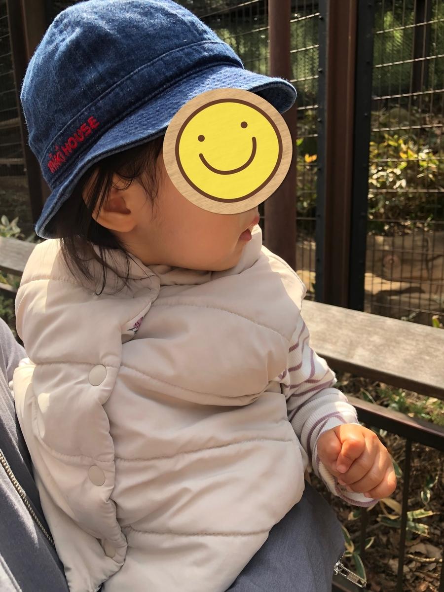 f:id:yuki_no_hana:20210323134540j:plain