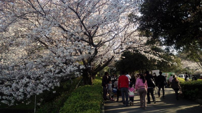 f:id:yukiaki042:20150328160511j:image:w360