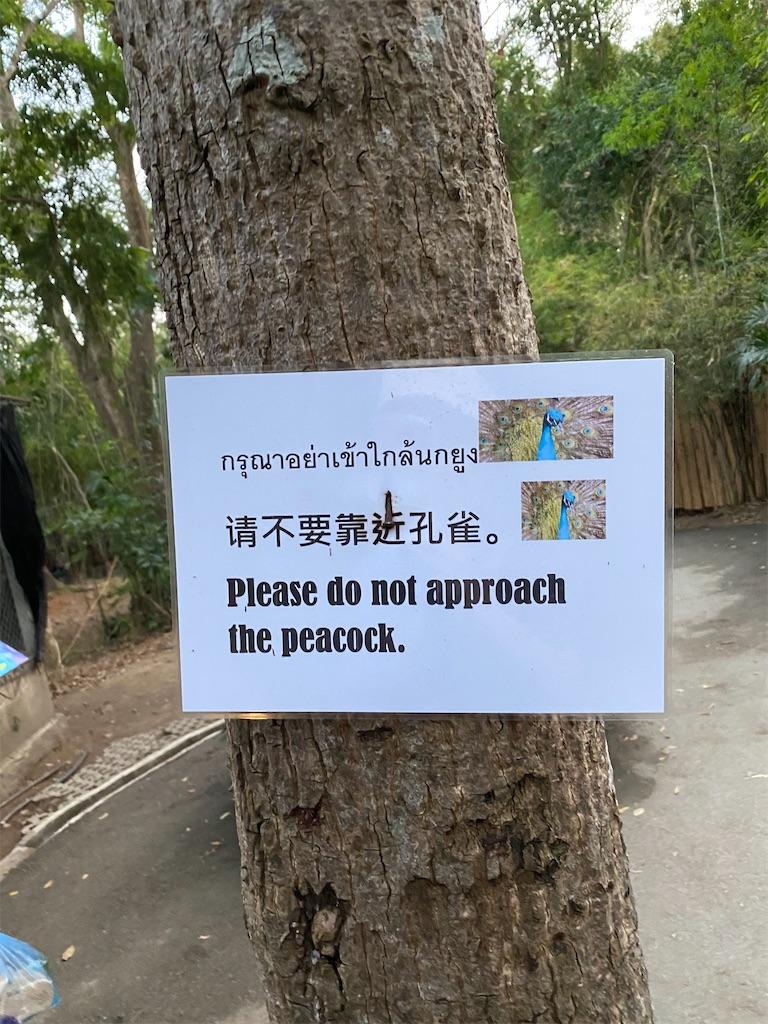 f:id:yukibangkok:20200217181527j:image