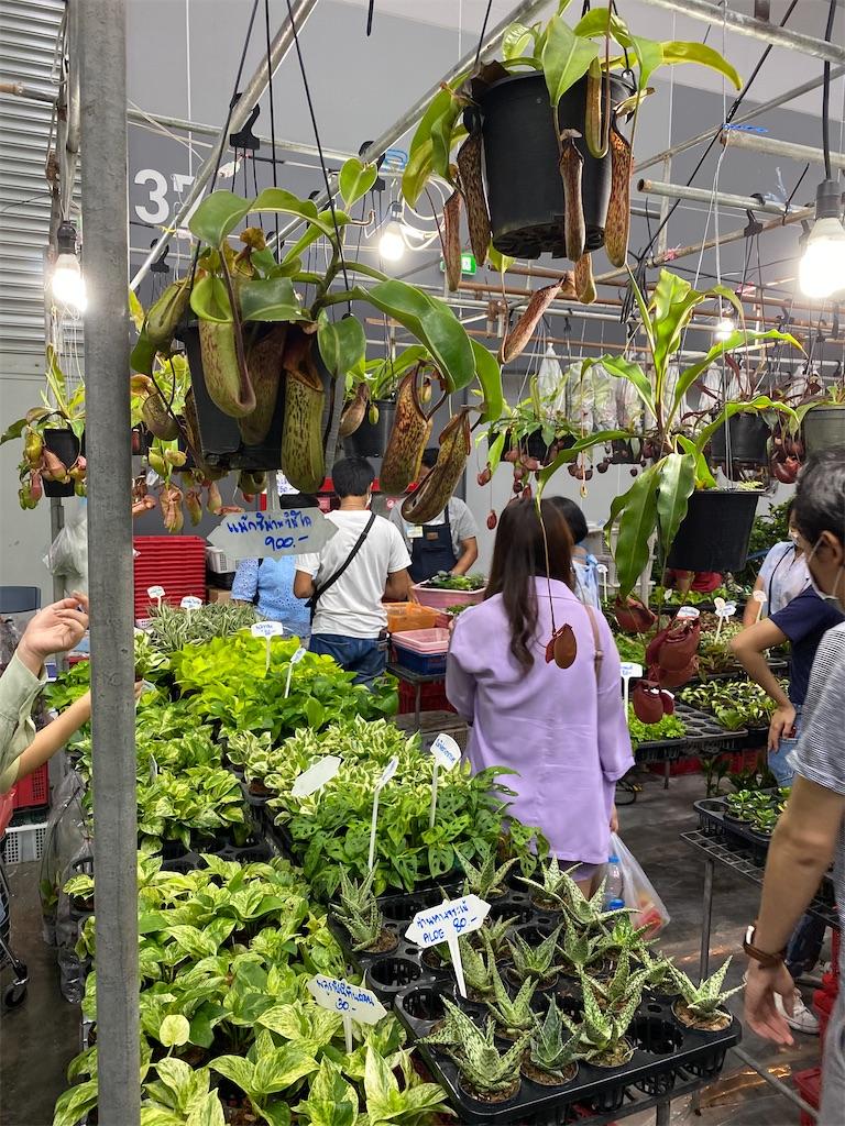 f:id:yukibangkok:20200817181123j:image