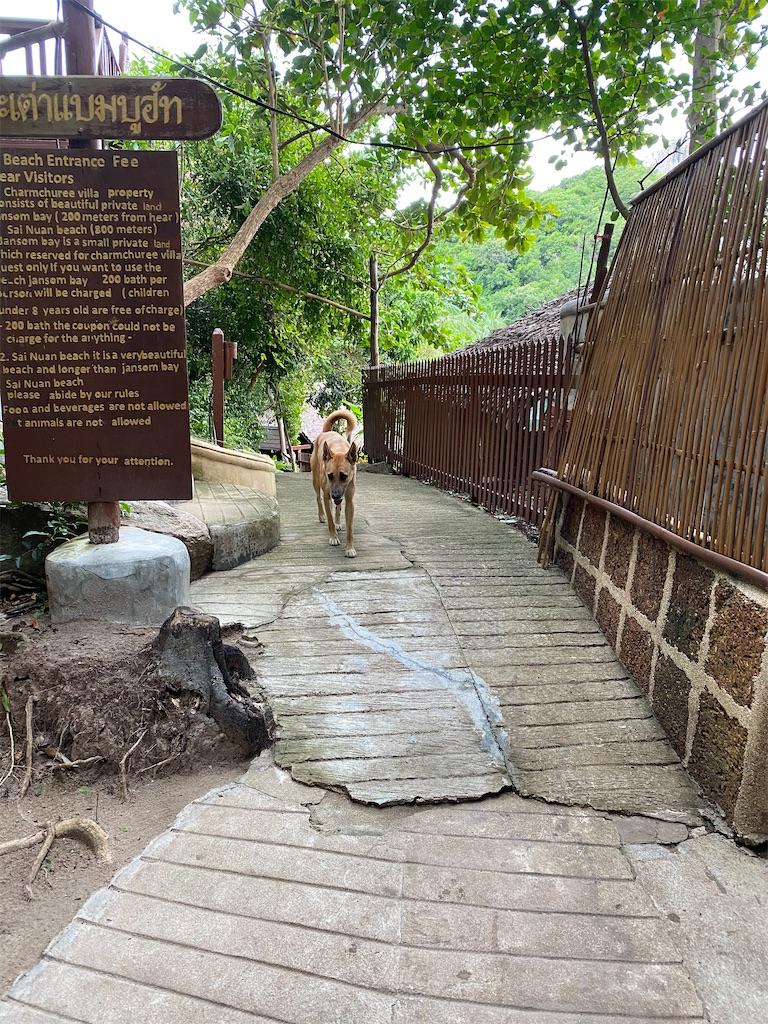 f:id:yukibangkok:20200925191147j:image