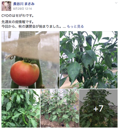 f:id:yukichi-liberal:20170831150655p:plain