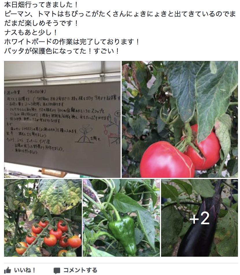 f:id:yukichi-liberal:20170831154625p:plain