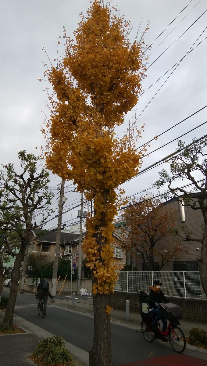 f:id:yukichiy:20191211165755j:plain
