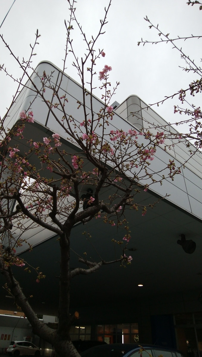 f:id:yukichiy:20200213165949j:plain