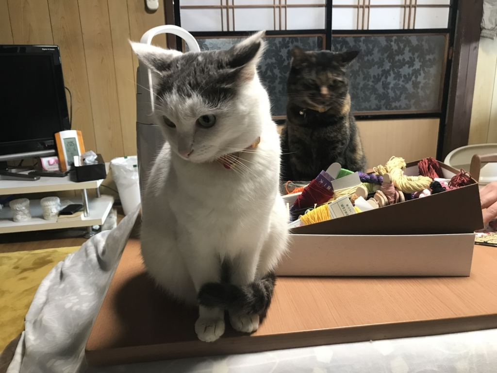 f:id:yukifurusatonoyome:20171207225740j:plain