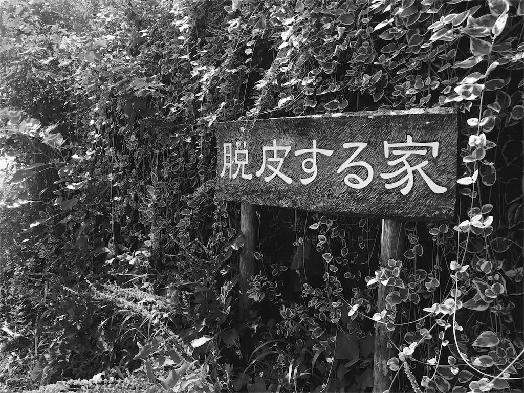 f:id:yukifurusatonoyome:20180831152343j:plain