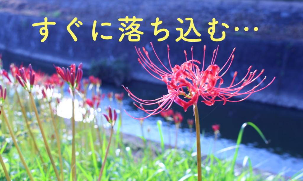 f:id:yukigao:20160917205822j:plain