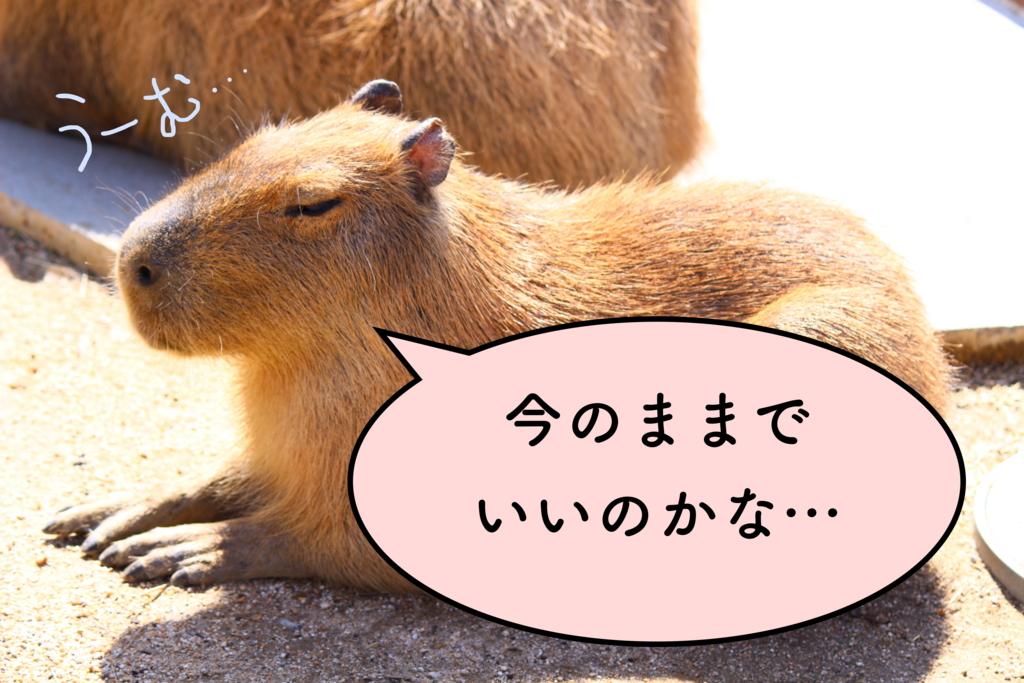 f:id:yukigao:20160920113531j:plain