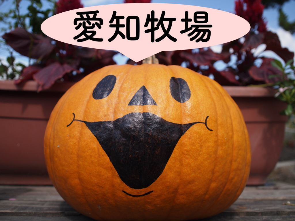 f:id:yukigao:20161002075855j:plain