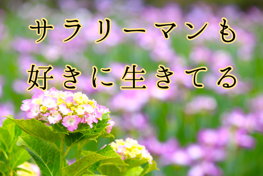 f:id:yukigao:20161006193638j:plain