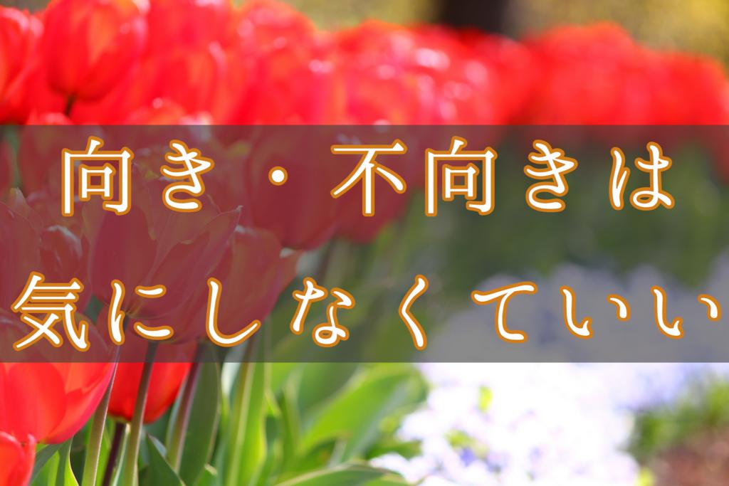 f:id:yukigao:20161014181943j:plain