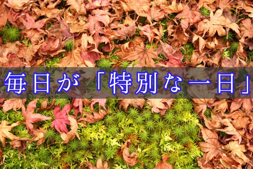 f:id:yukigao:20161021140205j:plain