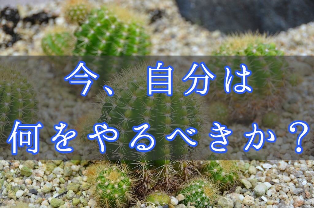 f:id:yukigao:20161108093846j:plain