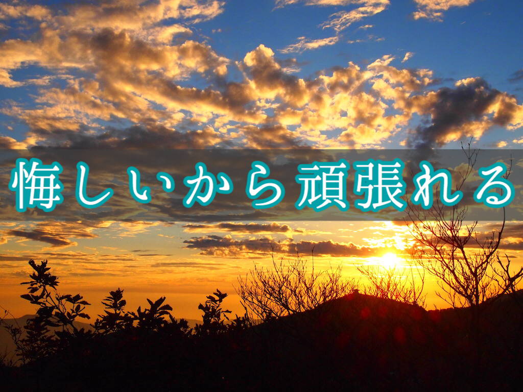 f:id:yukigao:20161111121455j:plain