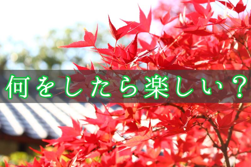 f:id:yukigao:20161117185017j:plain