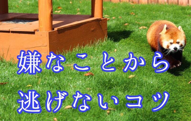 f:id:yukigao:20161202143810j:plain