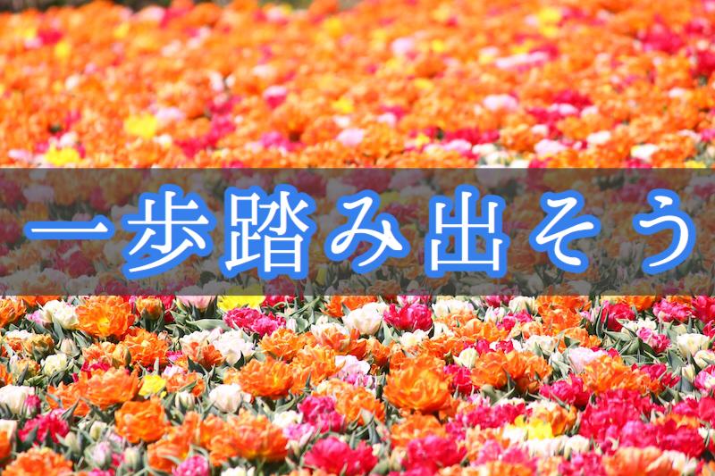 f:id:yukigao:20161213110625j:plain