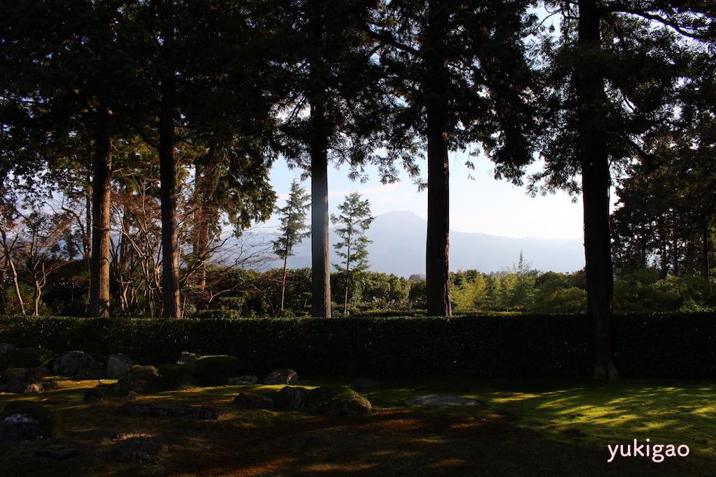 京都のお寺の庭園