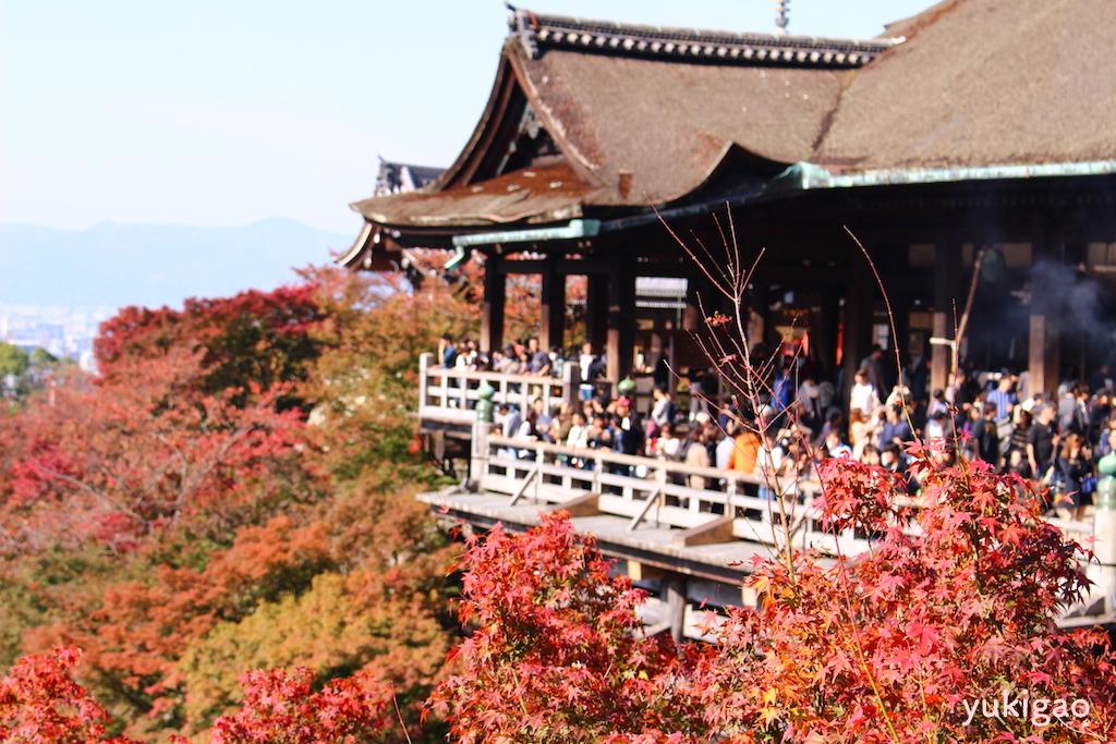 京都・清水寺の秋の景色