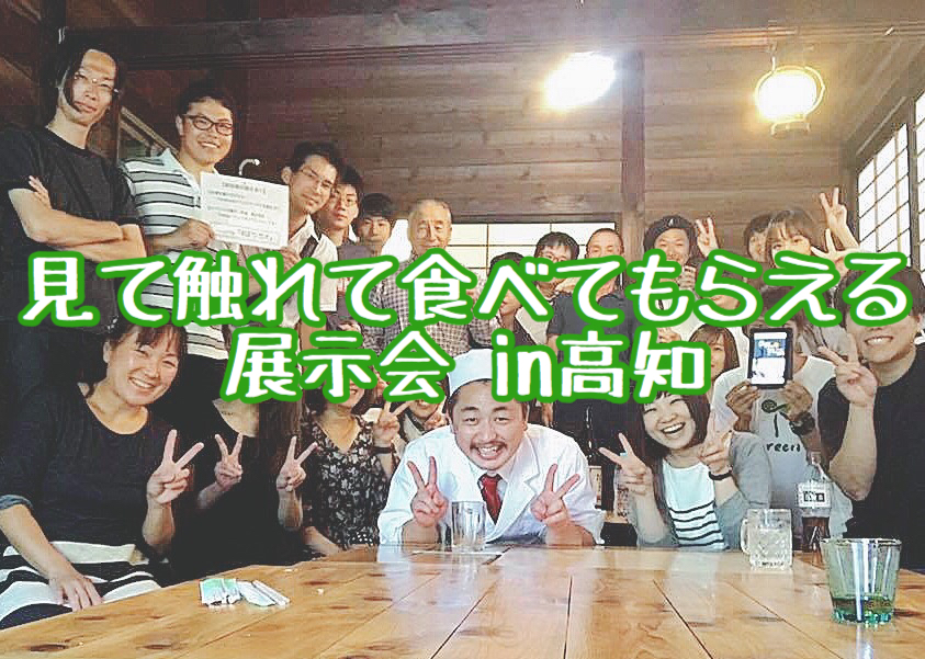 f:id:yukigao:20170612092128j:plain