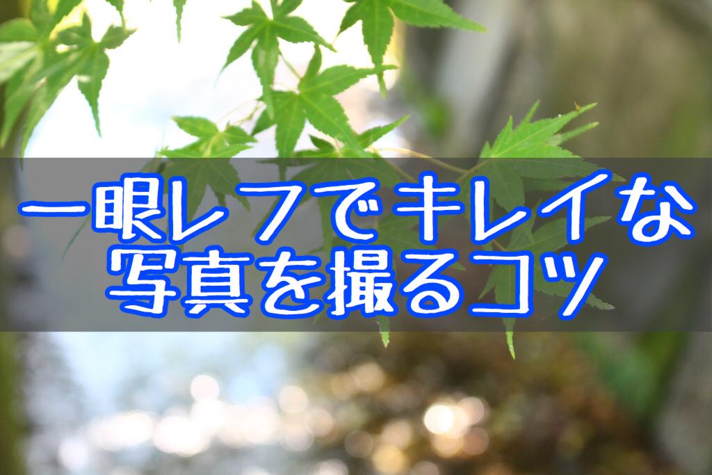 f:id:yukigao:20170629234826j:plain