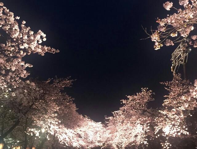 f:id:yukihaaka:20170410220603j:image