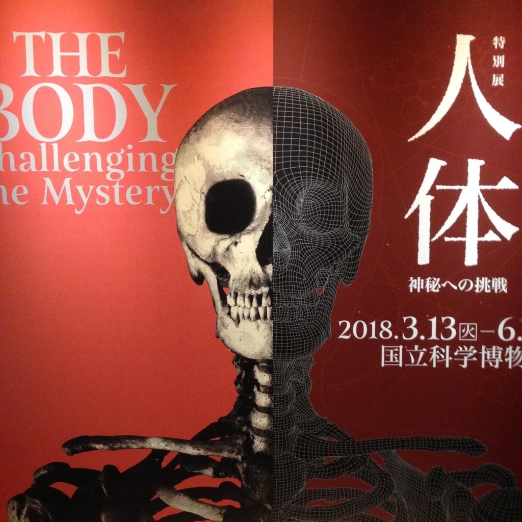 f:id:yukihananotogi:20180415073045j:plain