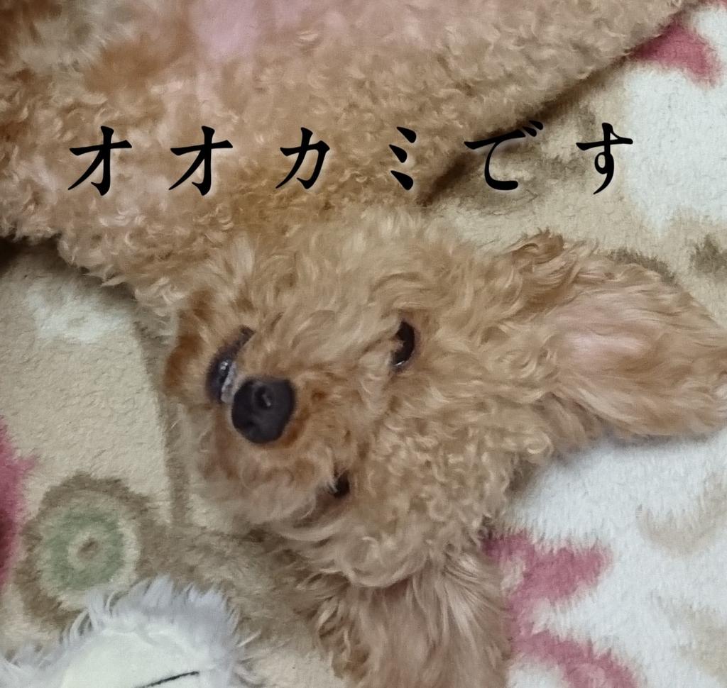 f:id:yukiharu-blog:20181105191239j:plain