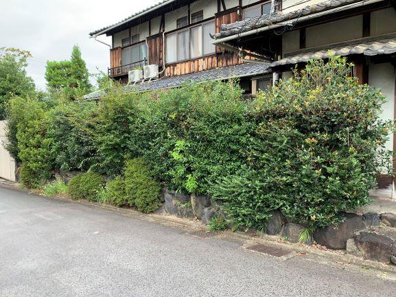 f:id:yukihatu:20200913060248j:plain