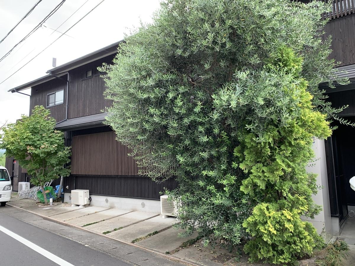 f:id:yukihatu:20200918200856j:plain