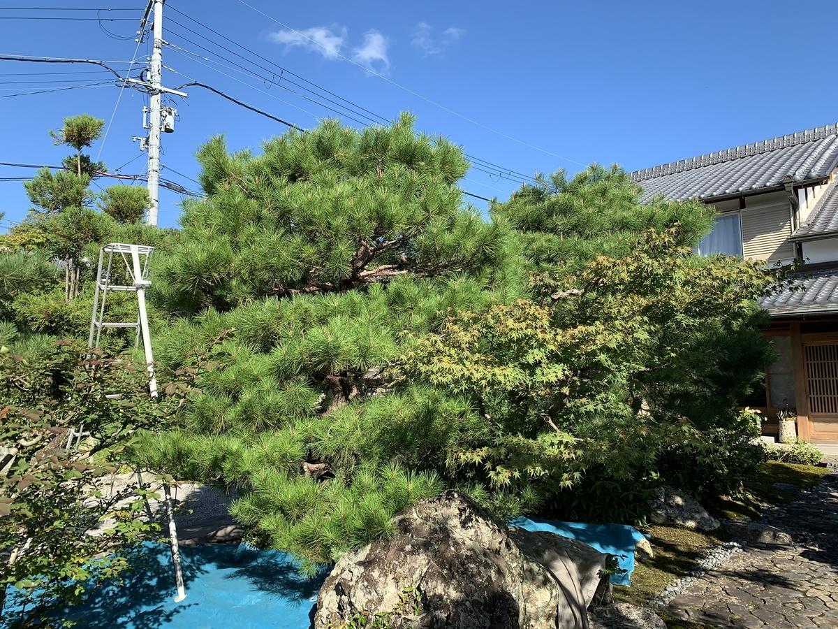f:id:yukihatu:20201001060111j:plain