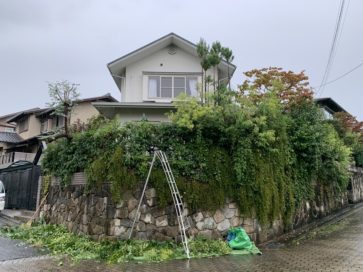 f:id:yukihatu:20201001064149j:plain