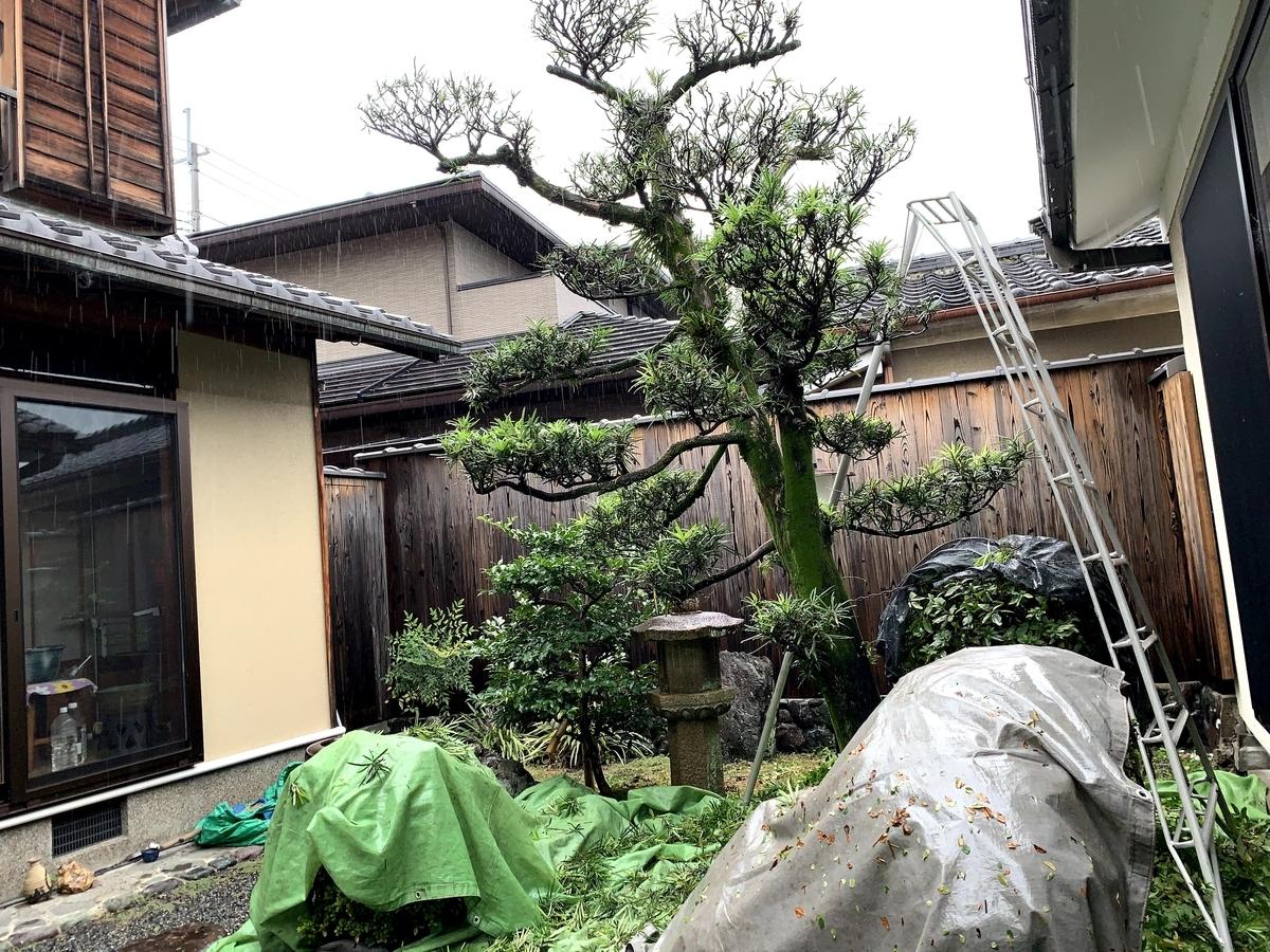 f:id:yukihatu:20201016202747j:plain
