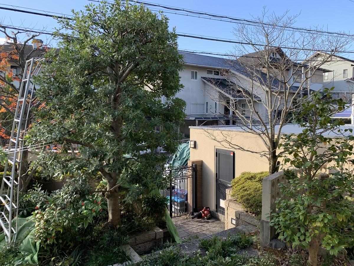 f:id:yukihatu:20201211062027j:plain