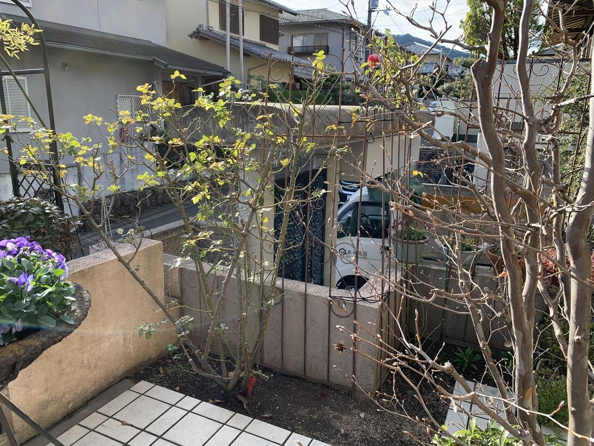 f:id:yukihatu:20201222045329j:plain