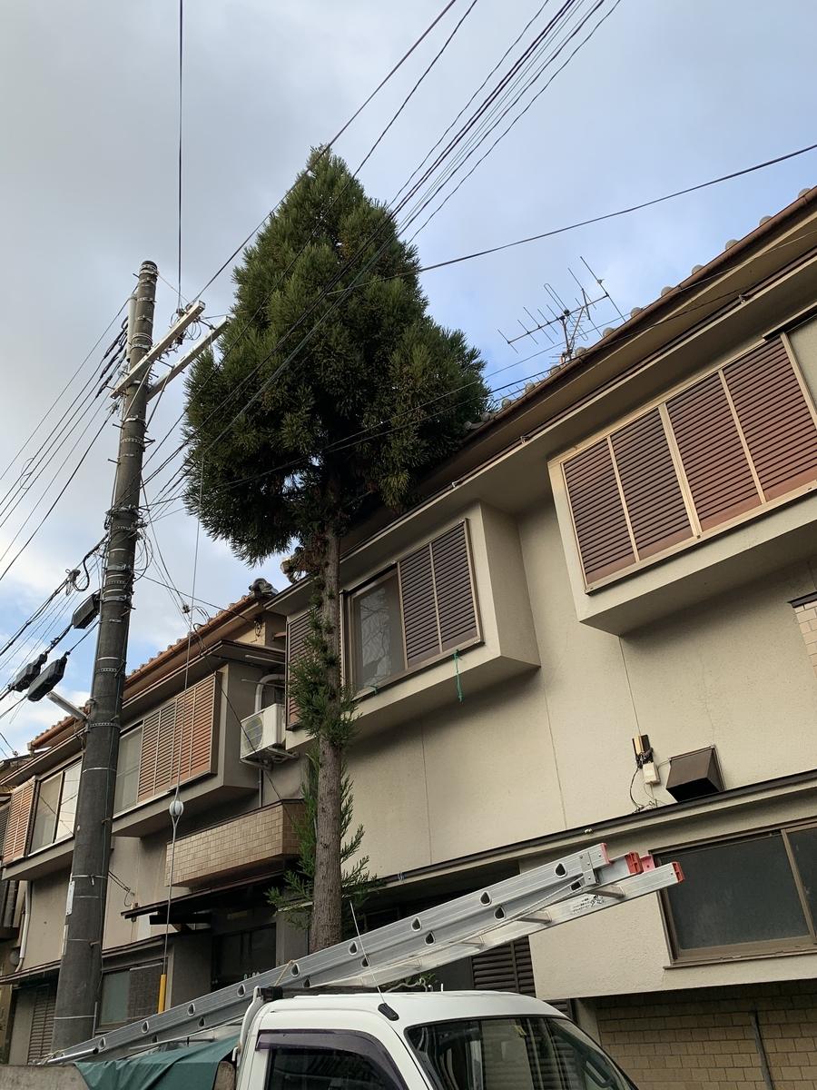 f:id:yukihatu:20201230071004j:plain