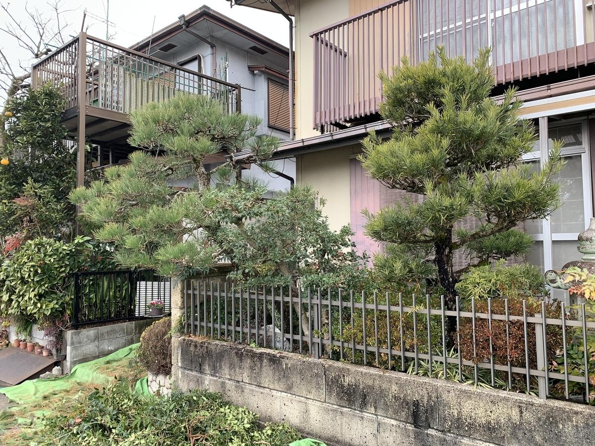 f:id:yukihatu:20201231170614j:plain