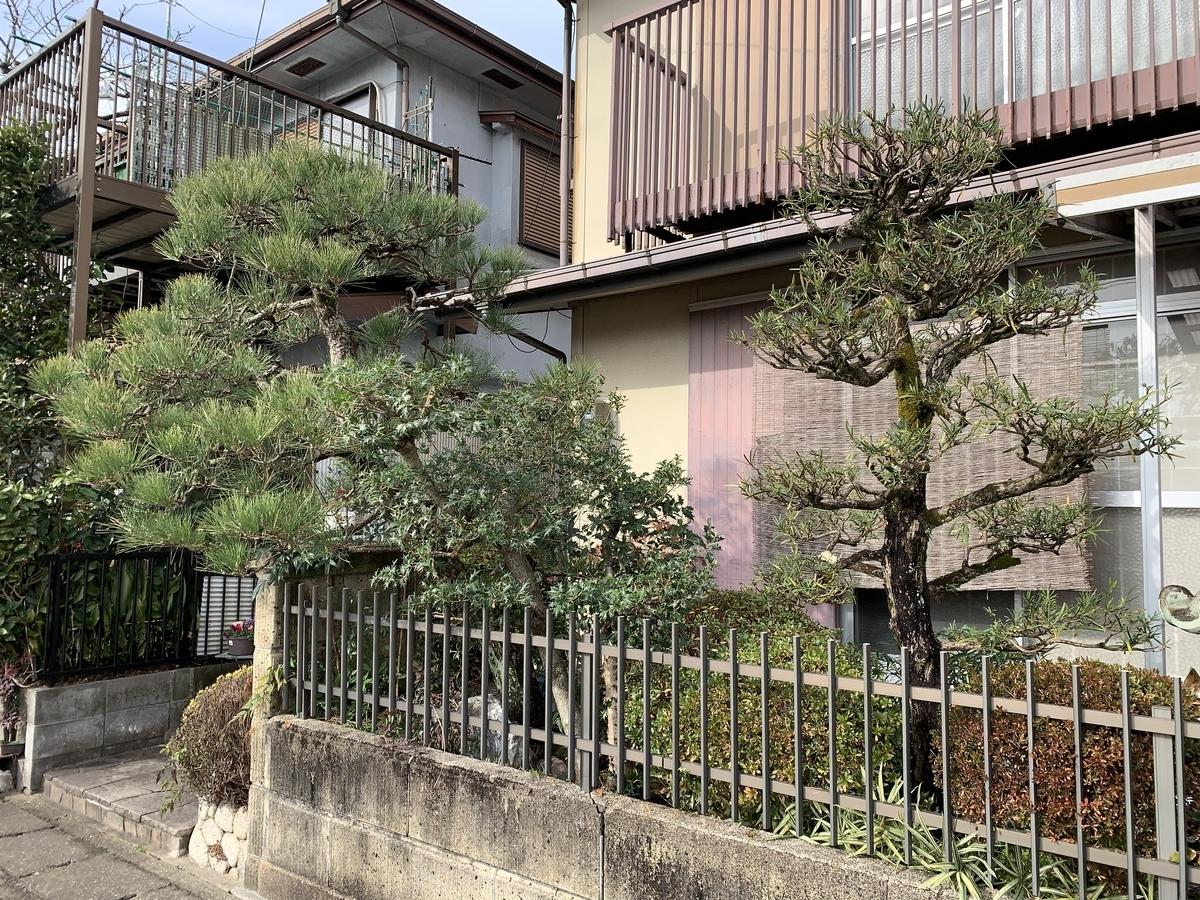 f:id:yukihatu:20201231172234j:plain