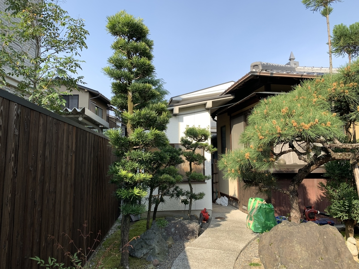f:id:yukihatu:20210417113555j:plain