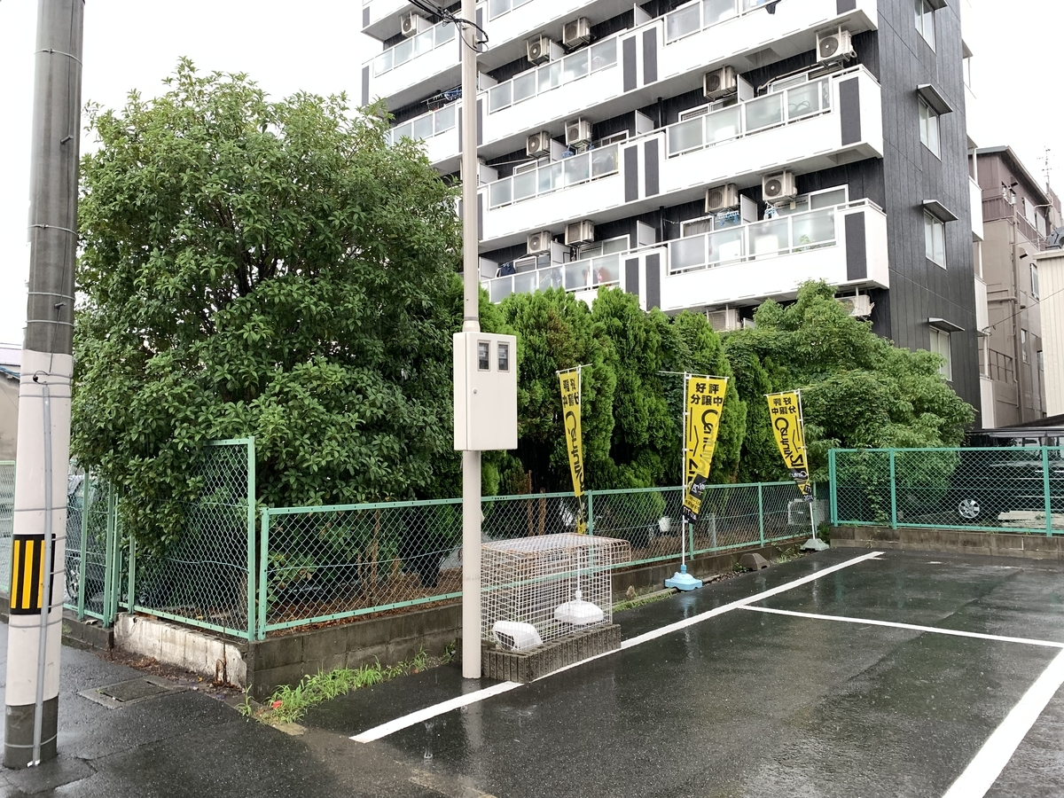 f:id:yukihatu:20210715211615j:plain