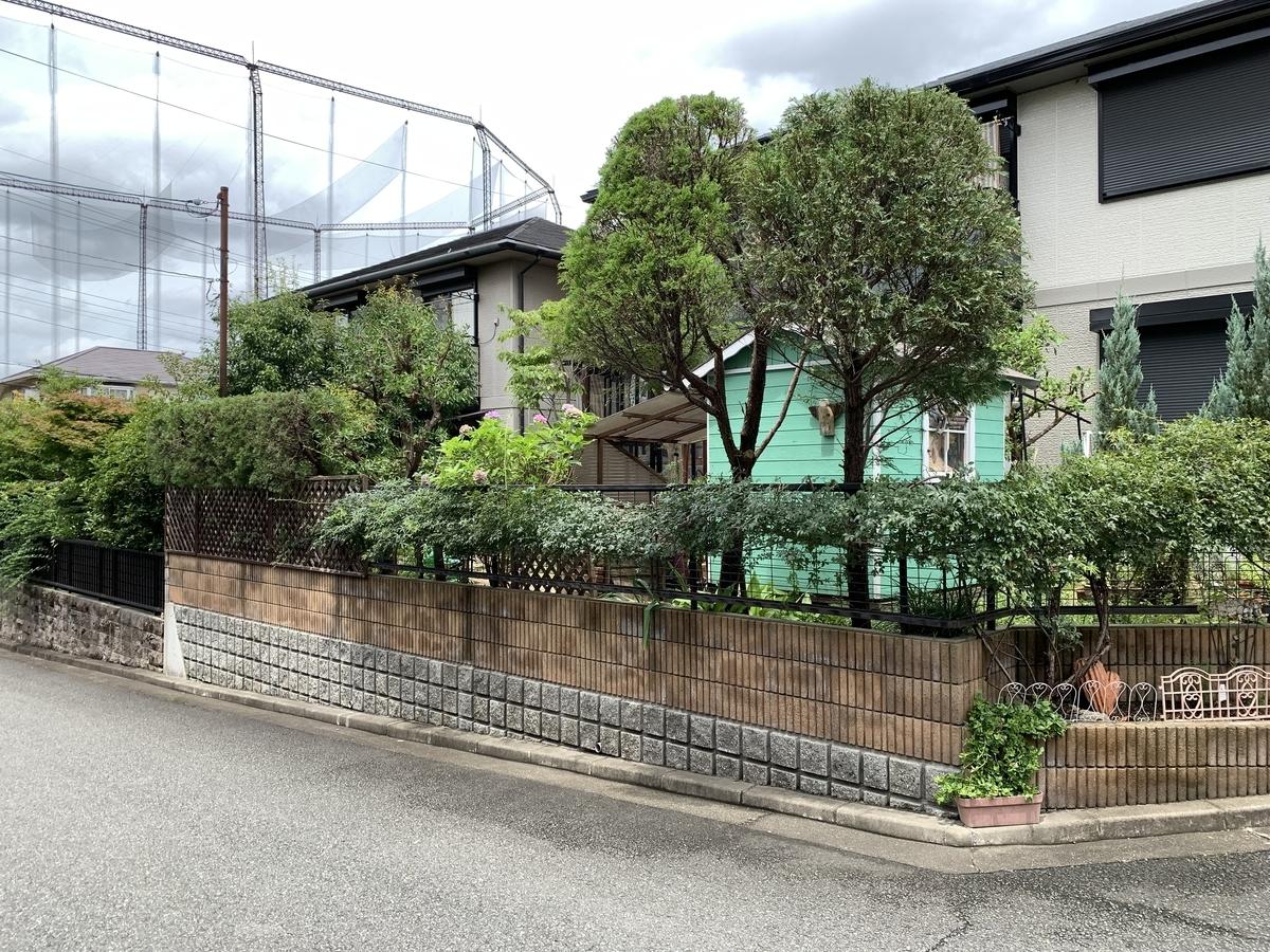 f:id:yukihatu:20210726213043j:plain