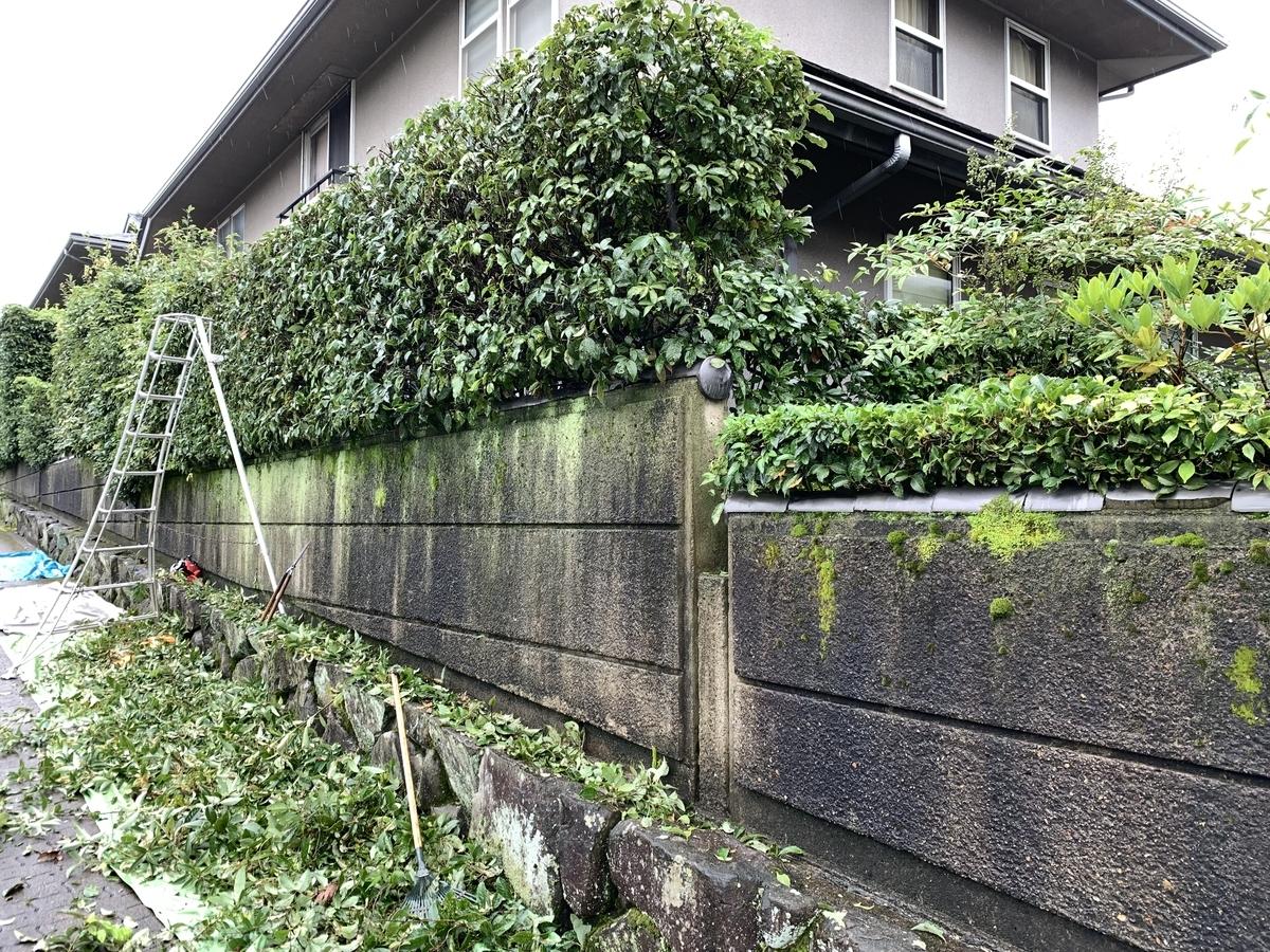 f:id:yukihatu:20210829191242j:plain