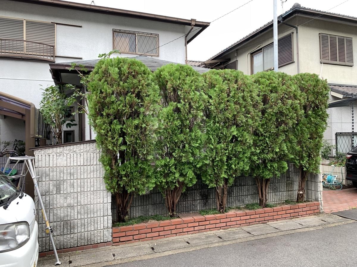 f:id:yukihatu:20210829202047j:plain