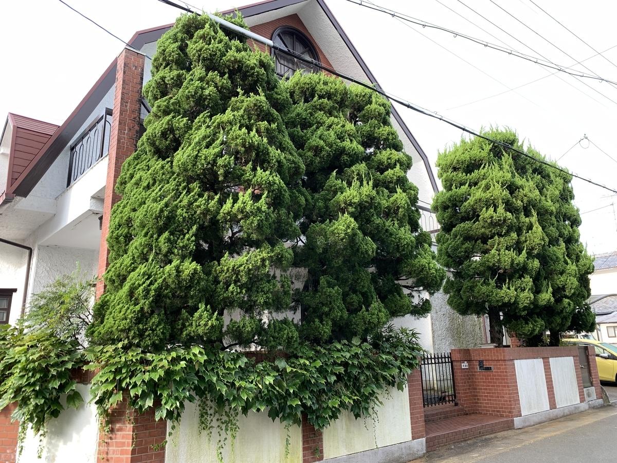 f:id:yukihatu:20210915212705j:plain