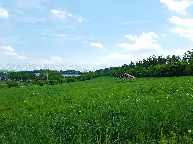f:id:yukihiro0201:20170629181034j:plain