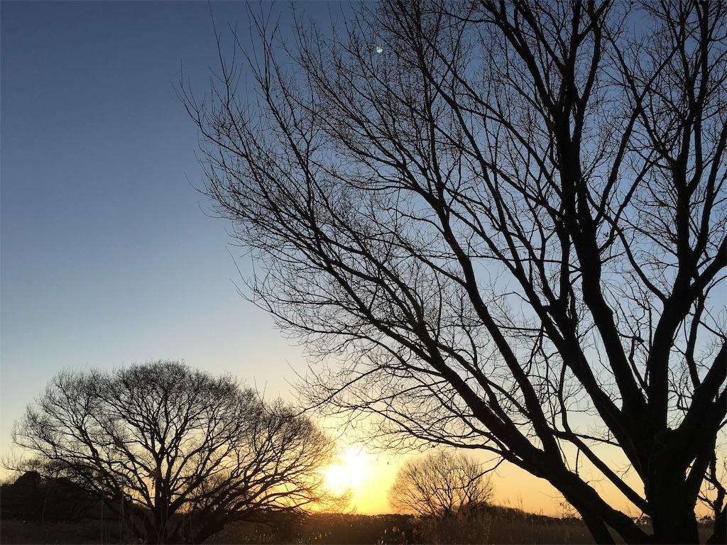 f:id:yukiho2451:20190124110850j:image