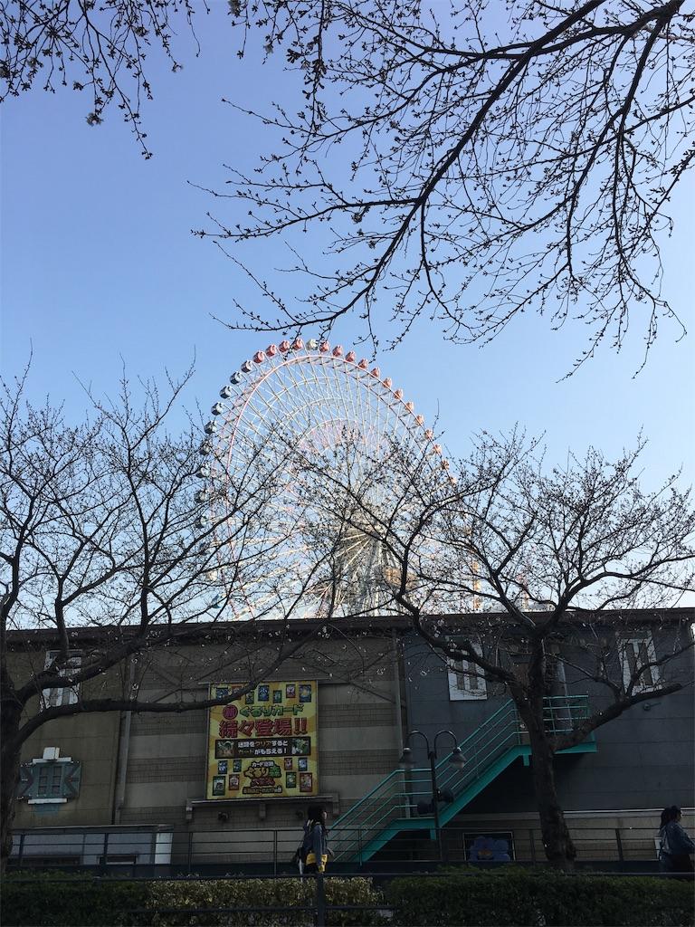 f:id:yukiho2451:20190327211344j:image