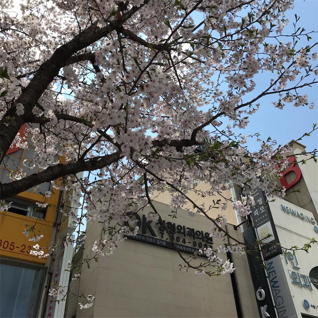 f:id:yukihoppi:20170422132624j:image